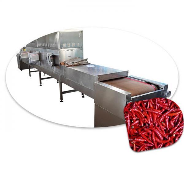 Industrial Vacuum Dryer -Microwave Vacuum Dryer for Rosebud #1 image