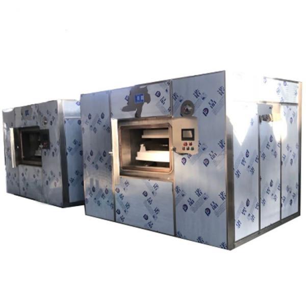 Industrial Vacuum Dryer -Microwave Vacuum Dryer for Rosebud #2 image