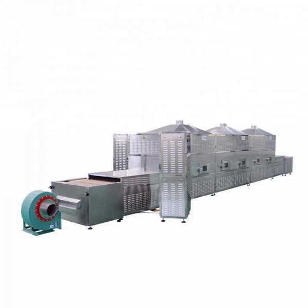 Industrial Vacuum Dryer -Microwave Vacuum Dryer for Rosebud #3 image